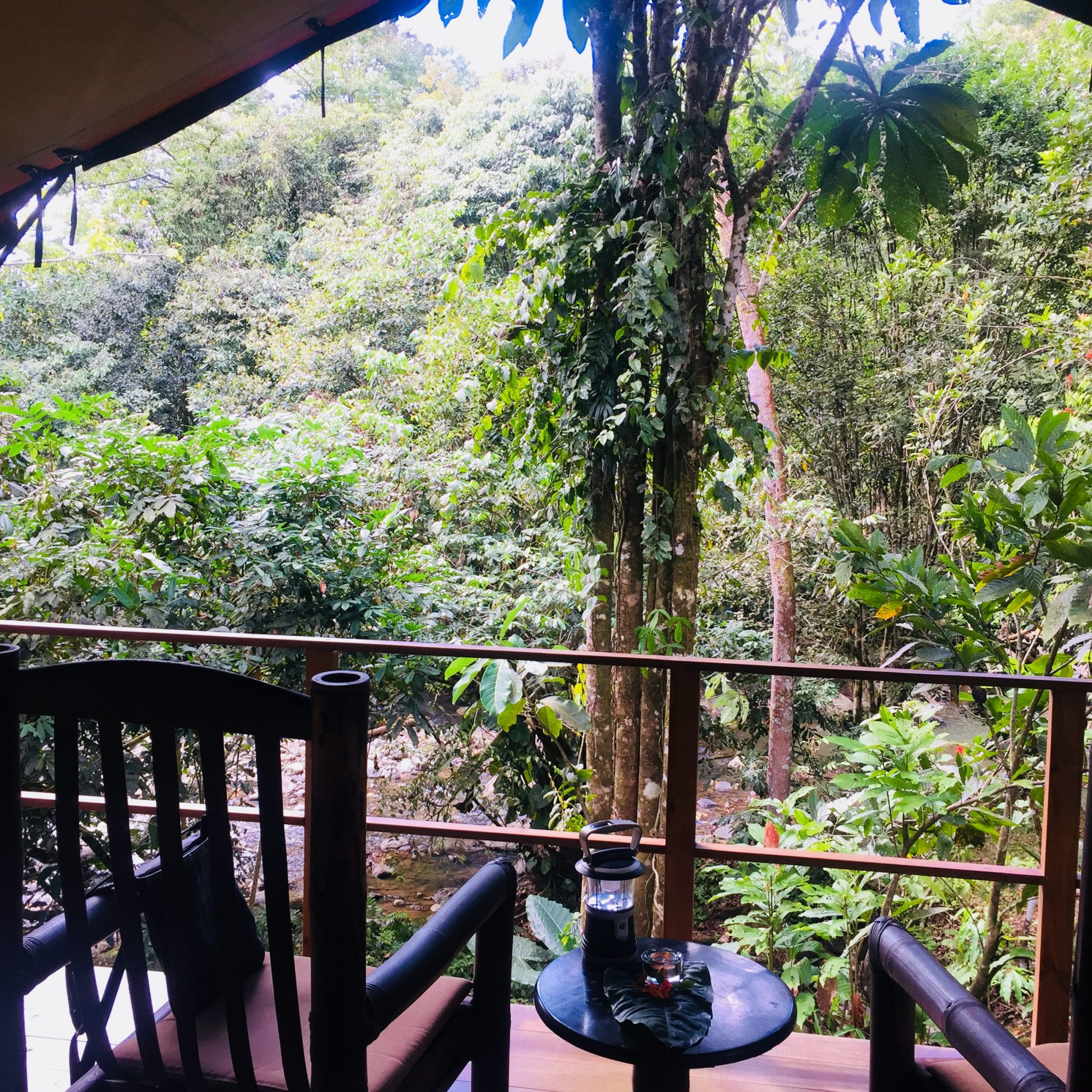 Morning at Rio Tico - a genuine connection to nature usually comes from smaller lodgings.
