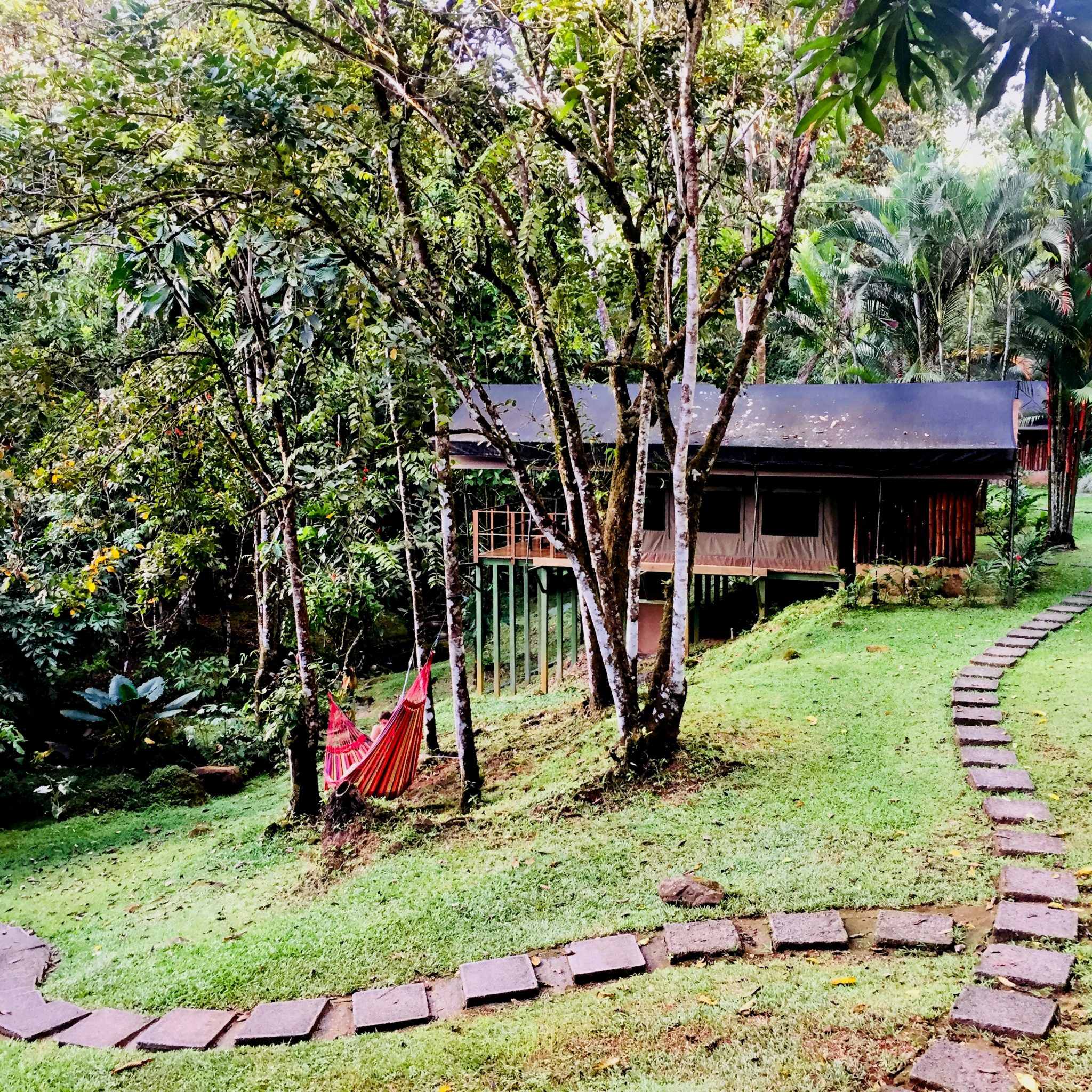 Rio Tico Lodge perfectly blends in with the forest.
