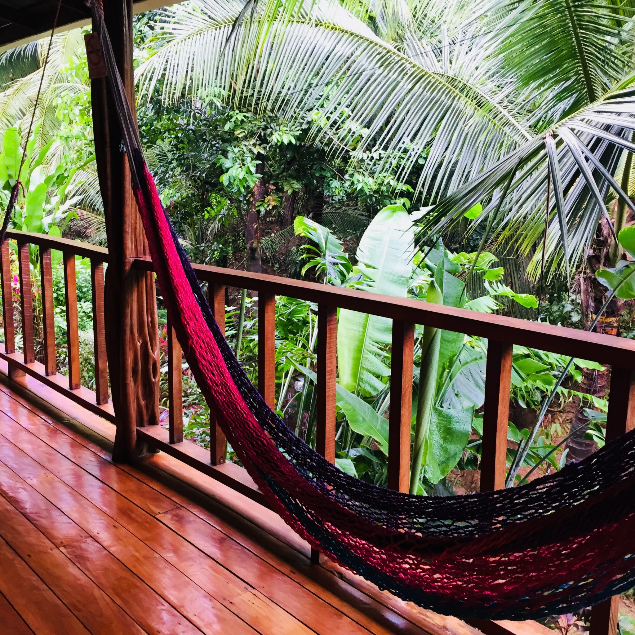 An ecolodge will help you stay truly connected to the rainforest.