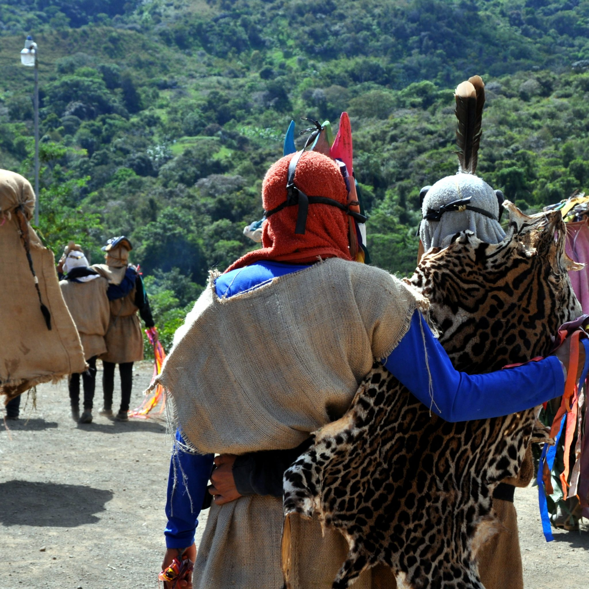 Diablitos in their elaborate costumes chasing the toro.