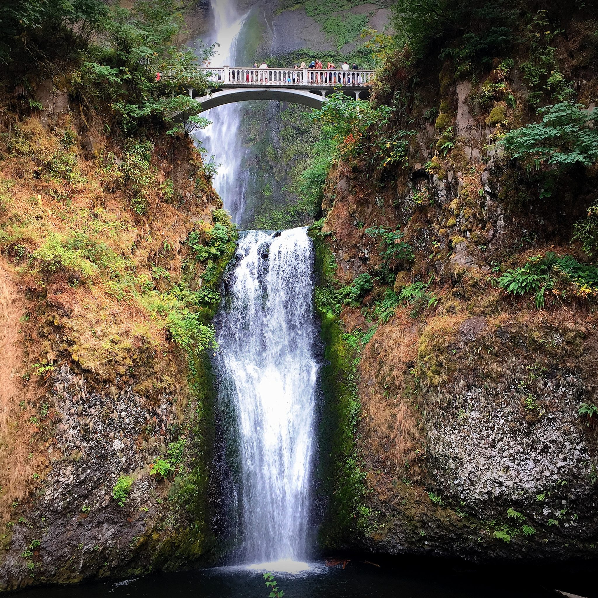 Multnomah Falls is by far the locals and visitors' favorite stop along Columbia River Gorge.