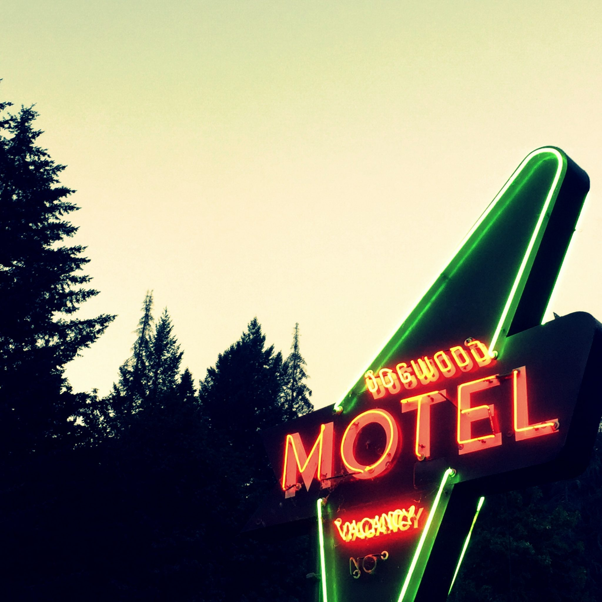 Cozy wood cabins with a touch of retro at the Dogwood Motel.