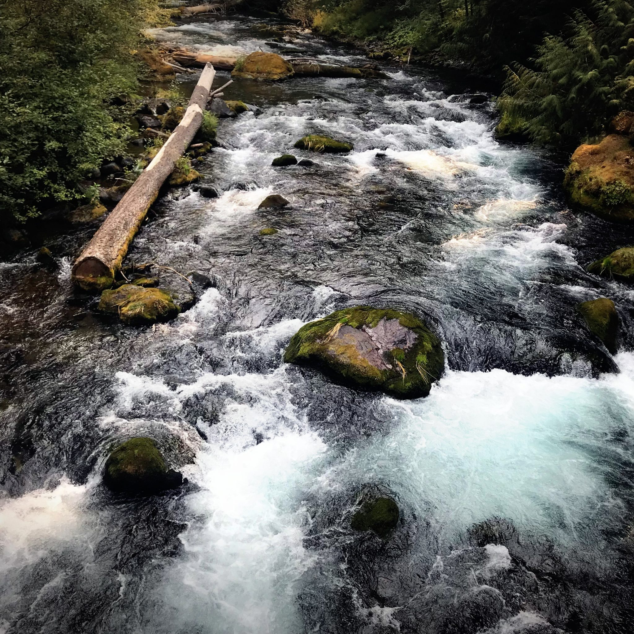 The name 'Umpqua' is believed to mean Thundering Waters.