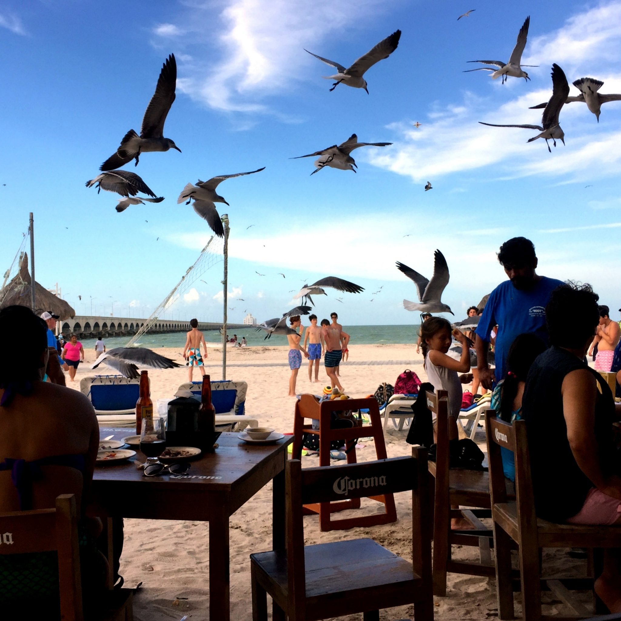 Grab a cerveza and a fresh ceviche from one of many bars by Progreso pier and soak up the vibes.