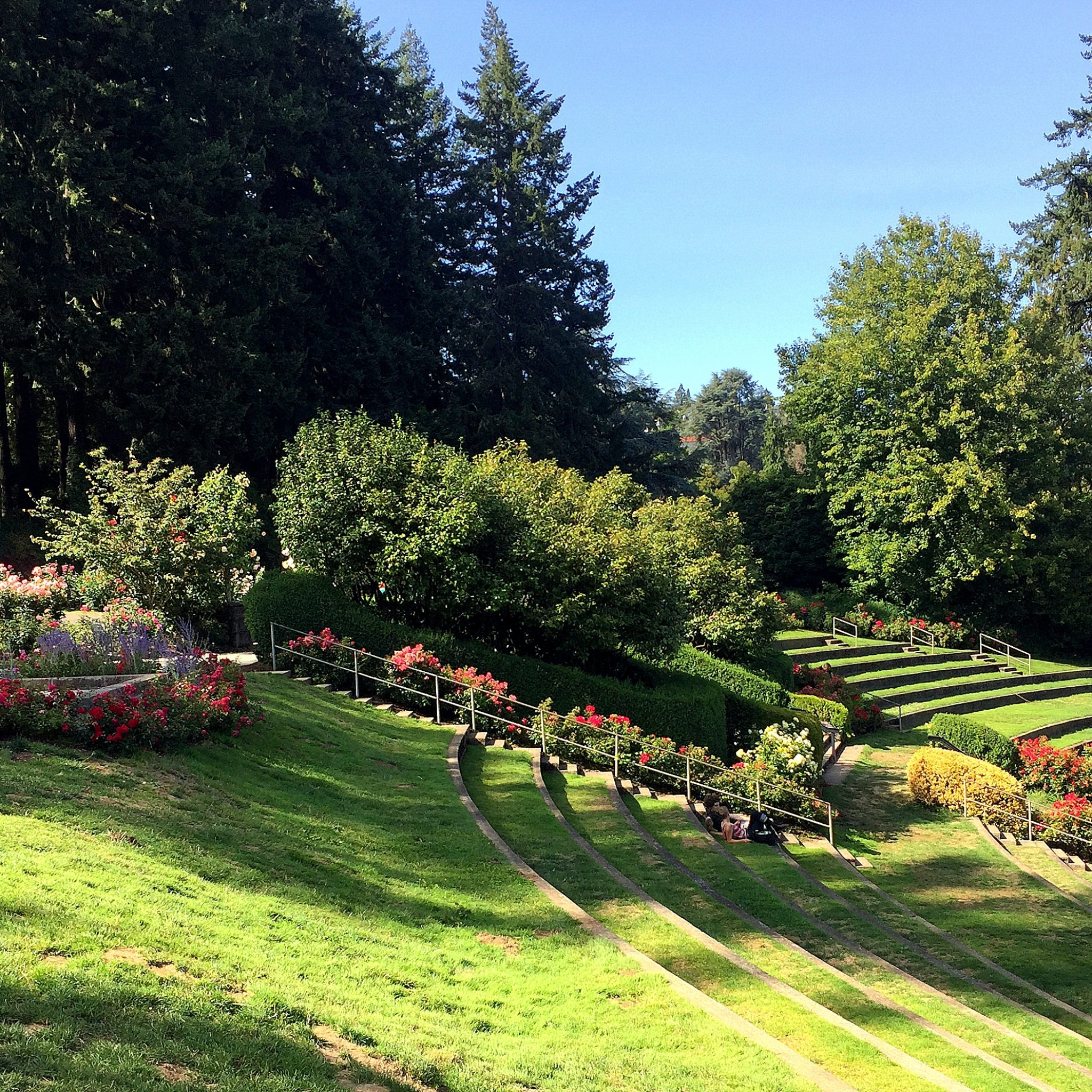 The stunning public park known as the Rose Garden is home to over 10,000 roses.