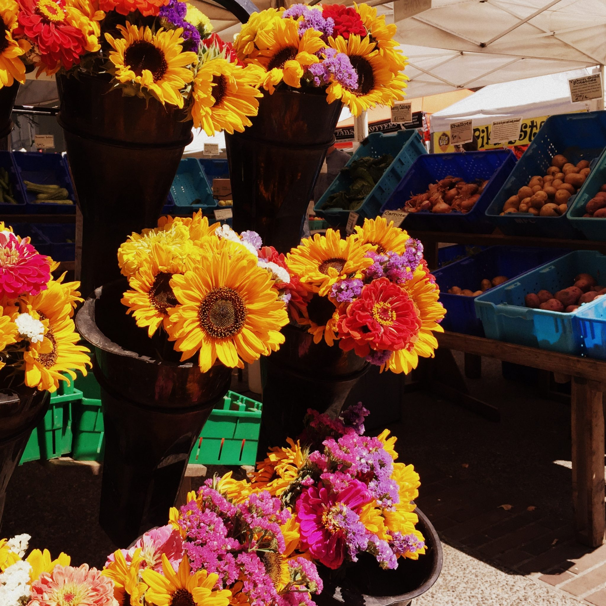 The excellent weekly Portland Farmers Market is bound to keep you occupied all morning.